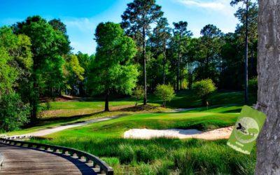 Endoterapia para campos de golf: TreeKeeper