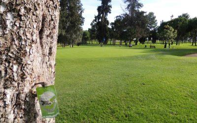 Curso de endoterapia para campos de golf