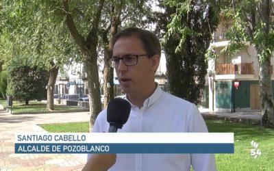 Tratamiento en Pozoblanco contra Galeruca del Olmo