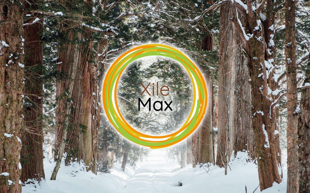 XileMax. Recuperación de árboles dañados por heladas.